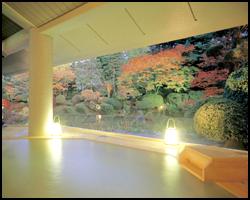 ライトアップ庭園